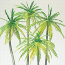 PREISER 18600  Palmbomen  1:87